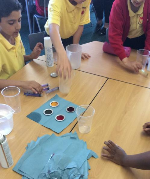 Yr 5 in science week-investigating and observing.