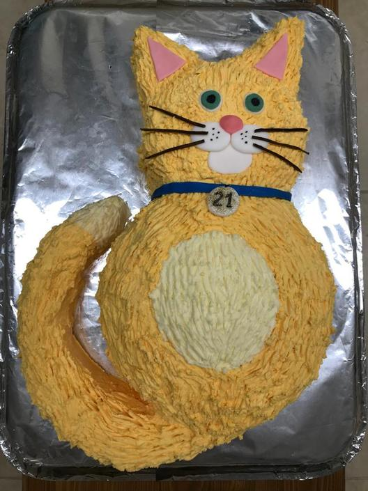 Mrs Barr's cat cake for her daughter's birthday!