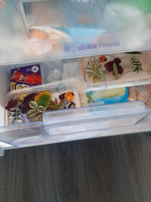 Put in freezer