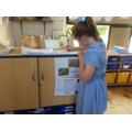Eden Project workshop - where does food come from?