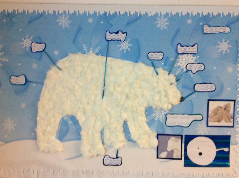 Class Polar Bear