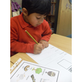 We have written 'Lost' posters for Mummy Owl.