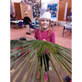 Exploring real palm leaves!