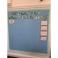 The beginning of our enquiry journey display.