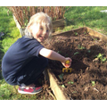 preparing our vegetable beds