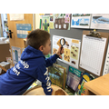Investigating this terms science display