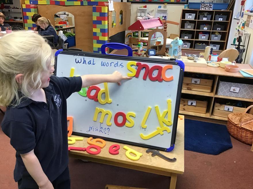 Choosing Literacy