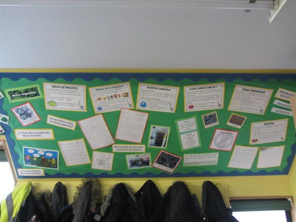 Our science display