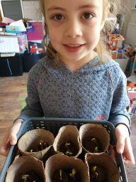 Seren growing plants