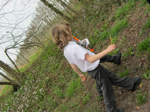 A plant hunt through the orchard!