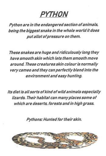 Maria's python facts