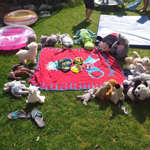 Caolfhionn's teddy bear picnic