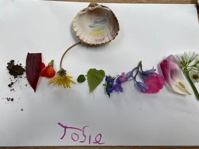 Josie's natural art