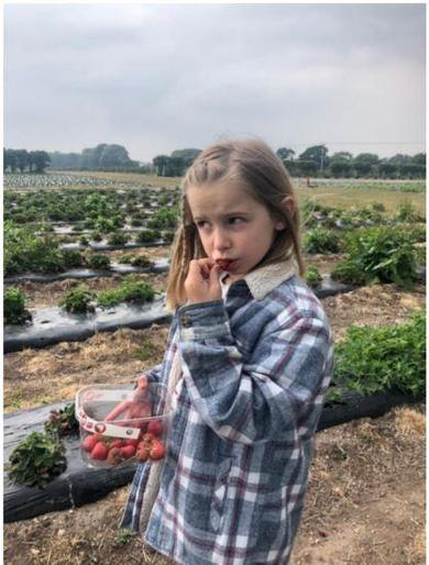 Eva had LOADS of fun strawberry picking!