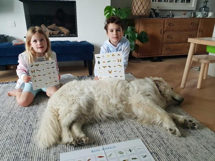 Scarlet, Zachary and Bella enjoying bug bingo