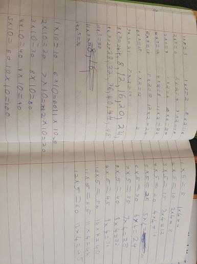 Amelia's marvellous maths