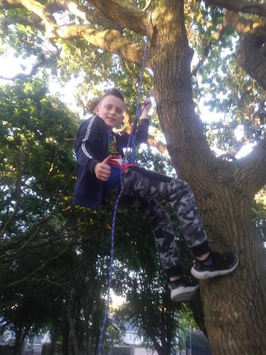 Myles has learnt how to climb a tree!