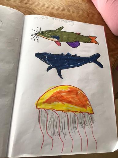 Pearl's super sea creatures!