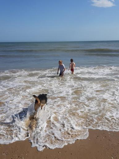 Theo and Thomas having fun at the beach!