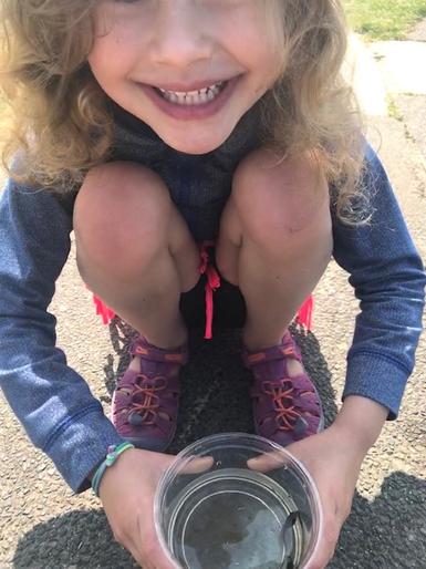 Thea found a tadpole!