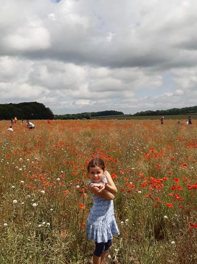 Isla out in a field of poppies!