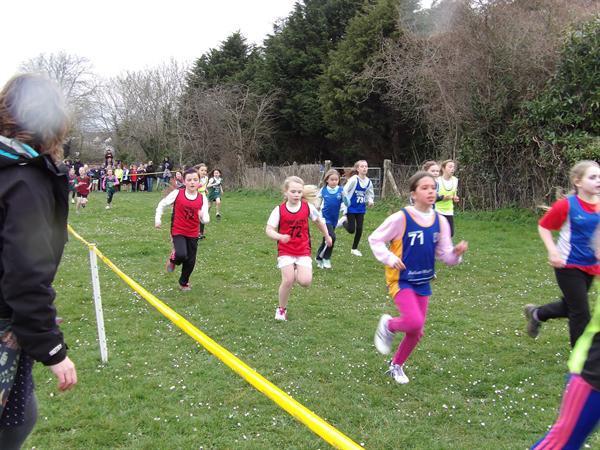 Girls Cross-country team