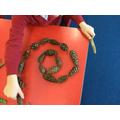 Spiral snails