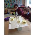 Forces- Design and make a bridge