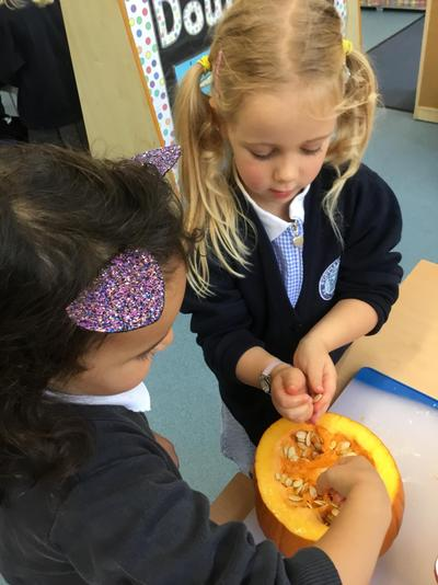 Reception preparing pumpkin seeds