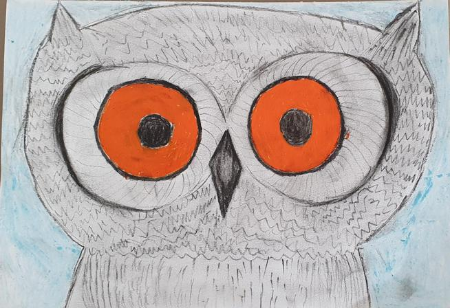 Kayne's Owl artwork