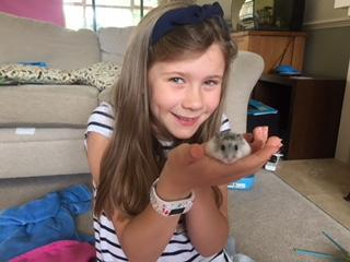 Maisie's new hamster Munchie