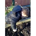 and digging