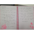 Fantastic Moggy comprehension, Leen, 1EW
