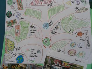 Community Garden winning designs 2
