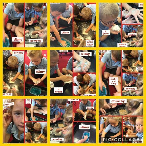 We explored different materials!