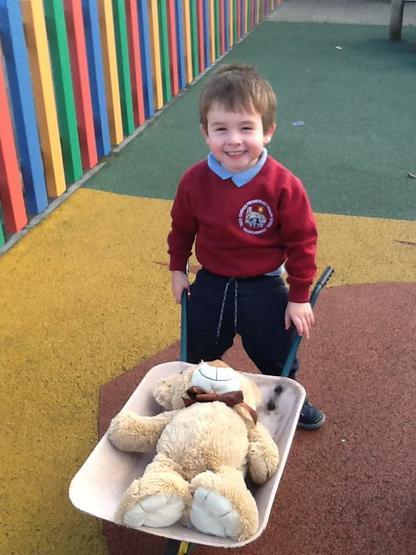 A big teddy for a small wheelbarrow.
