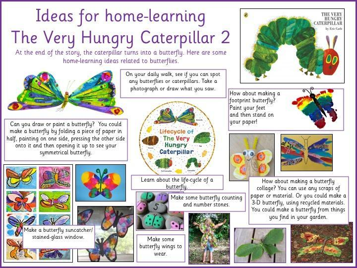 Butterfly related activities.