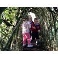 In the willow tunnel.