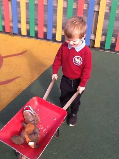 Dinosaur takes a ride in a wheelbarrow.