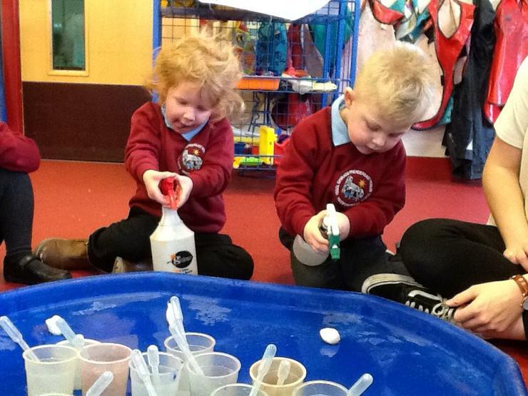 Spraying water onto cotton-wool balls.