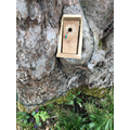 Fairy bedroom door by Freya & Orson