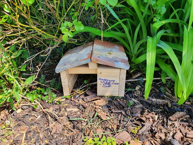 Gary's hedgehog house
