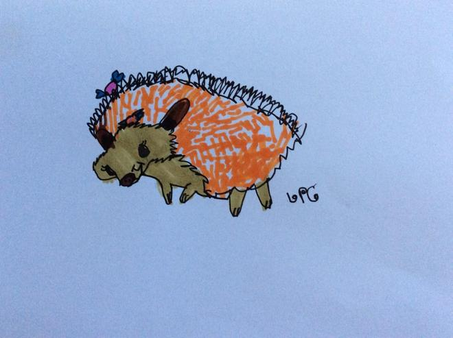 Lola's Hedgehog