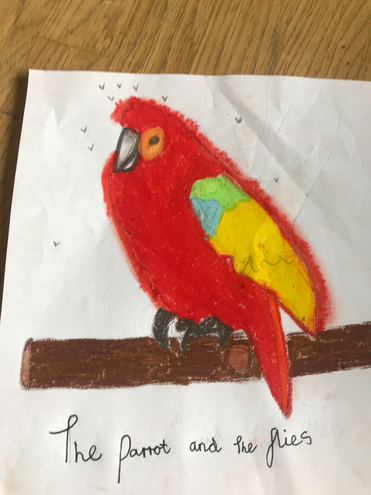 The parrot and the flies by Charlie