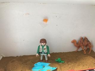 Scarlett's desert diarama drama-not much alive!