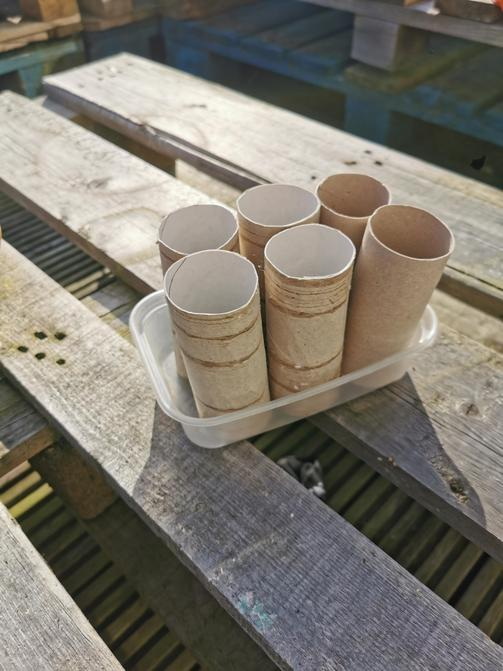 Get toilet roll tubes and your plastic tub