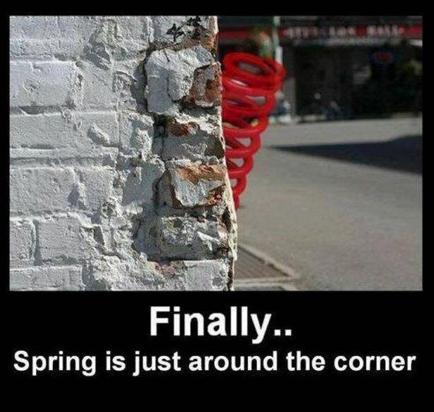 Spring is just around the corner!