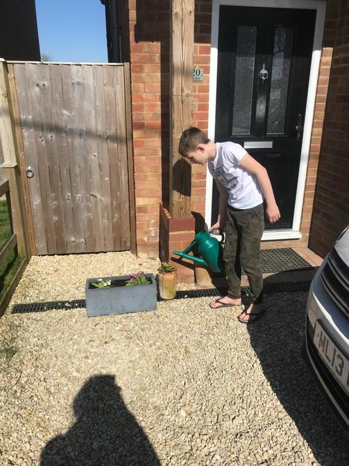 Stanley has been building a compost heap, setting up science investigations and replanting primroses to brighten up his front garden for passers-by.  He has plans to build a birdhouse too - good job Stanley.