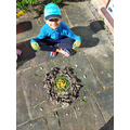 Dylan's Andy Goldsworthy art!