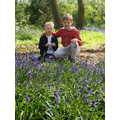 How many bluebells has Oscar and his brother found